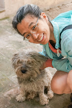 Photo: Florine and Eco;  Eco dashed out of the gate and was hit by a car about 3 weeks before our arrival.  She had surgery and was healing nicely when we met her.  While we were there, neither she nor Pepe, the gardener's dog, made any attempts to leave the villa.
