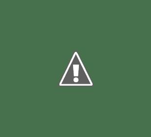Family Green STEAM Program