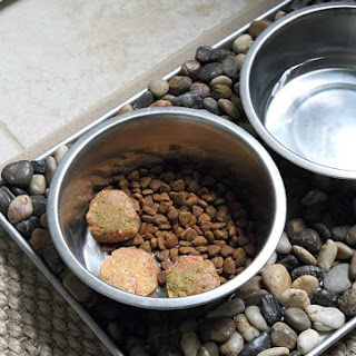 Homemade Raw Dog Food.