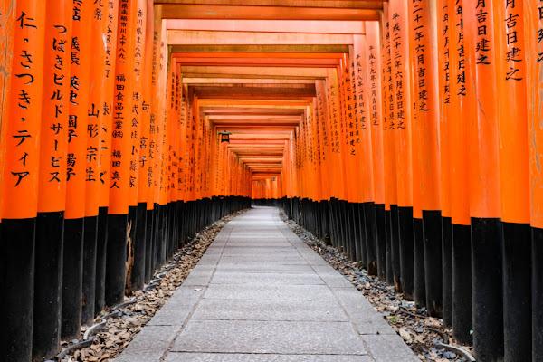 Kyoto,Fushimi Inari di claudio1984