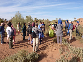 Photo: Halim explains the importance of our treeplanting project in Sisi Khalil to visitors and musicians of Taragalte festival.