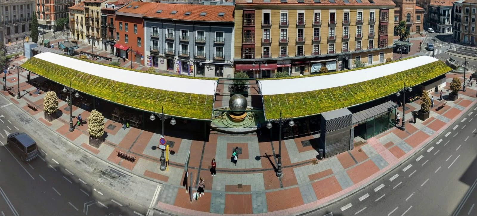Cubierta vegetal intensiva instalada en Valladolid