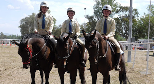 Narrabri Pony Club members Molly Michell-Smith riding Ballymount Lord Rubin, Eliza Dampney riding Junefield Brandy and Meagan Dampney riding Junefield Finarlee. The trio competed at the Tamworth Pony Club showriding, sporting and showjumping days last month.