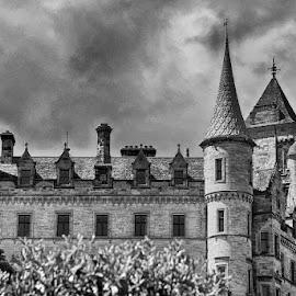 Dunrobin Castle by Pravine Chester - Black & White Buildings & Architecture ( castle, monochrome, black and white, building, architecture )