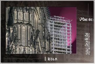Foto: 2007 10 19 - R 06 09 10 117 - P 022 - lila Käfig