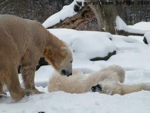 Photo: Gianna geniesst den Schnee :-)