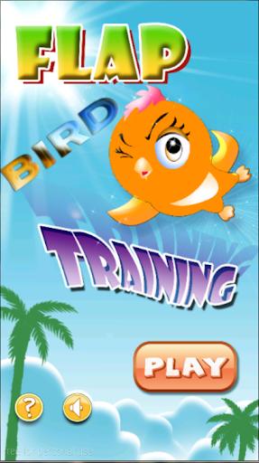 Flap Bird Training