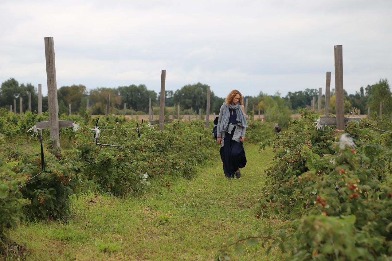 ферма органическая органик тур