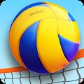 Beach Volleyball 3D download