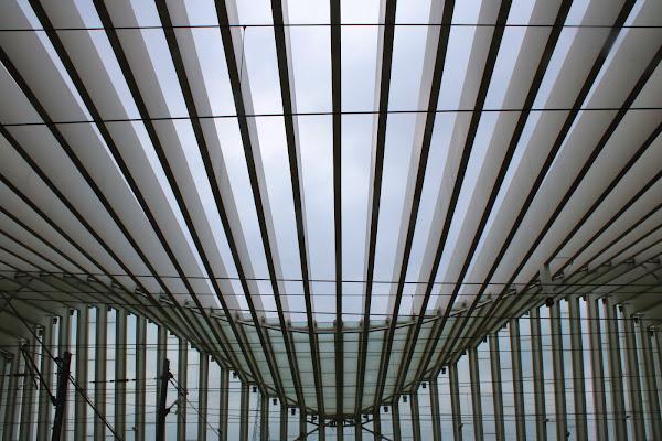 Le simmetrie di Calatrava di paolo-spagg