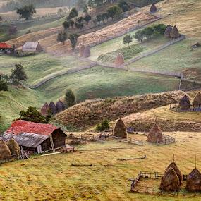 Fundatura Ponorului by Jeno Major - Landscapes Prairies, Meadows & Fields ( hills, meadows, romania, landscape, rural, fields )