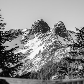 Lions Peaks by Ray Shiu - Landscapes Mountains & Hills ( sisters, mountain, black and white, snow, lions, photo, bc, vancouver, peaks, british columbia, b and w, landscape, b&w, monotone, mono-tone )
