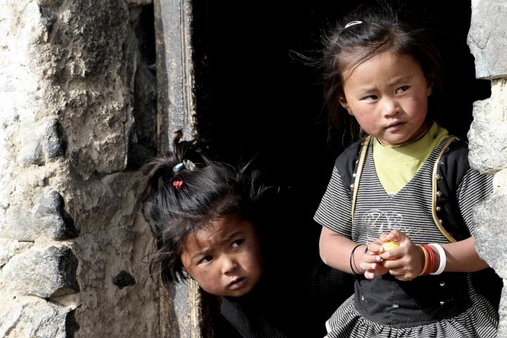 Piccole vedette Ladakhiane di David Marrone