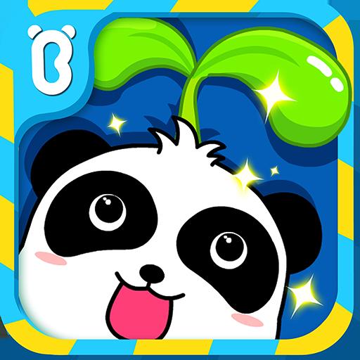 Baby Panda Magical Seeds