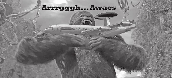 Affenmonster schnappt sich Awacs: «Arrrgggh Awacs!»