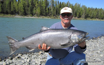 Photo: Another sweet day on the Kenai River, fishing for king salmon. Mid 60's, bluebird, and a 40 inch hen king salmon.