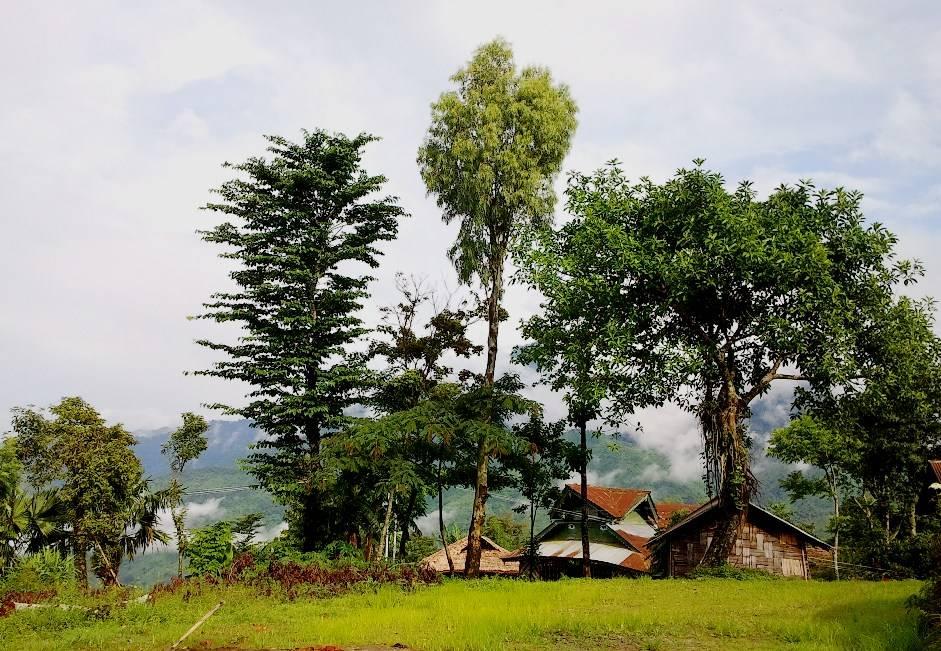 mon-north-east-india_image