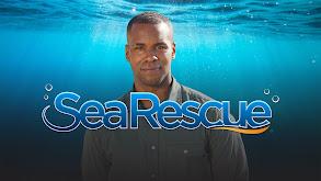 Sea Rescue thumbnail