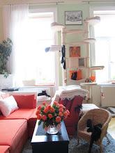 Photo: Wohnzimmer - Kratzbaum Nr. 3 (Blick vom Vorzimmer aus kommend)
