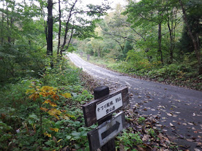 車道に出るがすぐ右の登山道へ