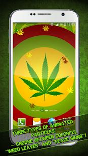 Najít připojení marihuany