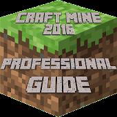 Craft Mine Proffesional 2016