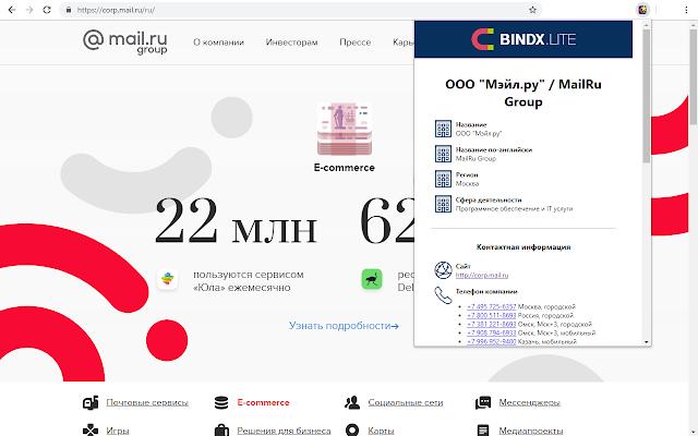 BINDX.Lite — данные о компании по её сайту