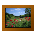 Various Photo Widget icon