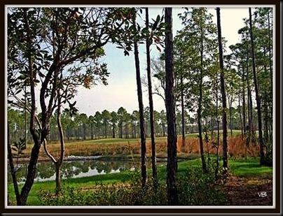 pond view1 4x3