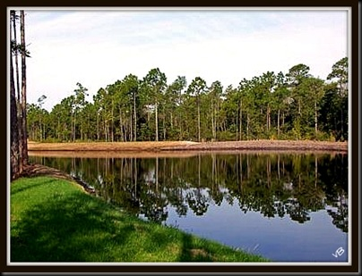pond view2 4x3