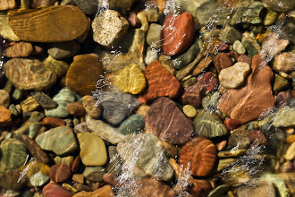 Photo: Multi-colored stones in the pristine waters of Sage Creek, iLCP Flathead RAVE, Flathead Valley, British Columbia, Canada