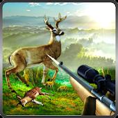 Sniper Deer Shooting 2016