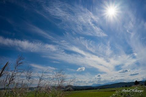 巻雲と積雲が交じり合う晩夏の空