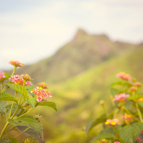 by Jr Flores - Landscapes Mountains & Hills