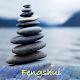 DIY Fengshui Download on Windows