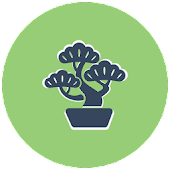 BONSAI - Tumblr Client App
