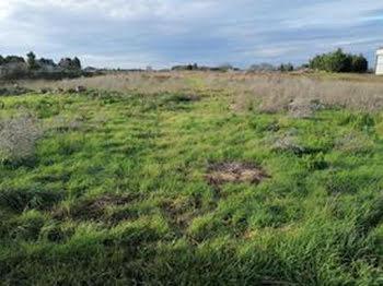 terrain à Cuhon (86)