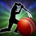 T20 Cricket Premier League icon
