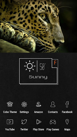 android Simple Cold Cheetah Theme Screenshot 1