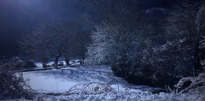 Dark Snow di Luigi Apisa