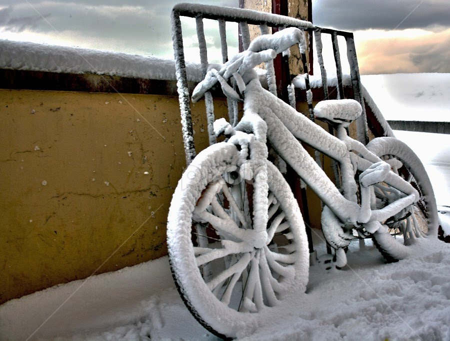 Frozen bike by Frodi Brinks - Artistic Objects Other Objects