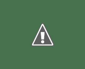 Photo: Mylene schaut auf den Rhein