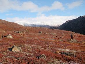 Photo: Greenland - Start of Day 5