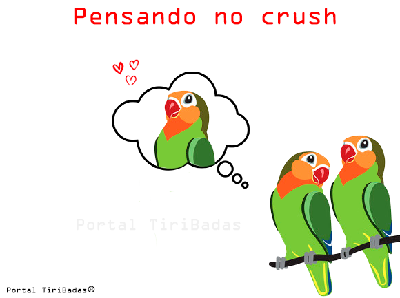 Pensando no crush