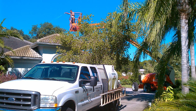 Roof Cleaning Tampa Com Website Review For Roof Cleaning