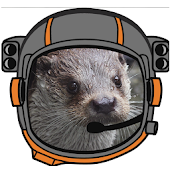 Otter Space Adventure