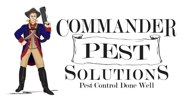 Pest control services in greenville sc by commander pest solutions cities anderson sc solutioingenieria Gallery