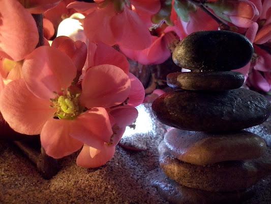 Primavera ZEN di Liliana H.