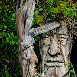 Wood Carvings by Don Kuhnle - Artistic Objects Other Objects ( statues, florida, st. augustine, indians, carvings,  )