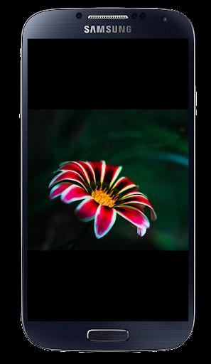 玩個人化App|Android用の背景,スクリーンセーバー,絵文字免費|APP試玩